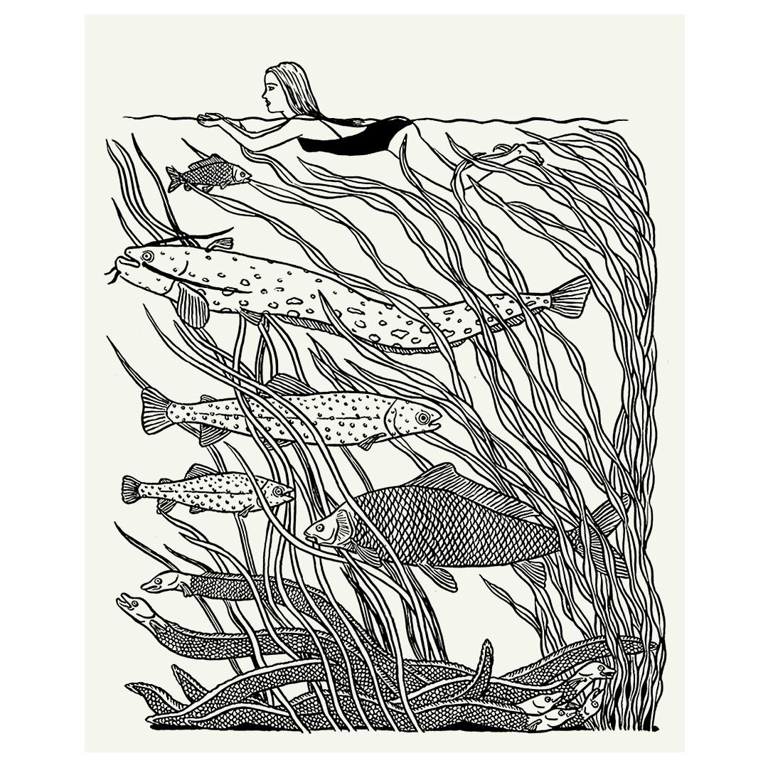 sabinekuehn-illustration-duesseldorf-nature-is-stronger-underwater